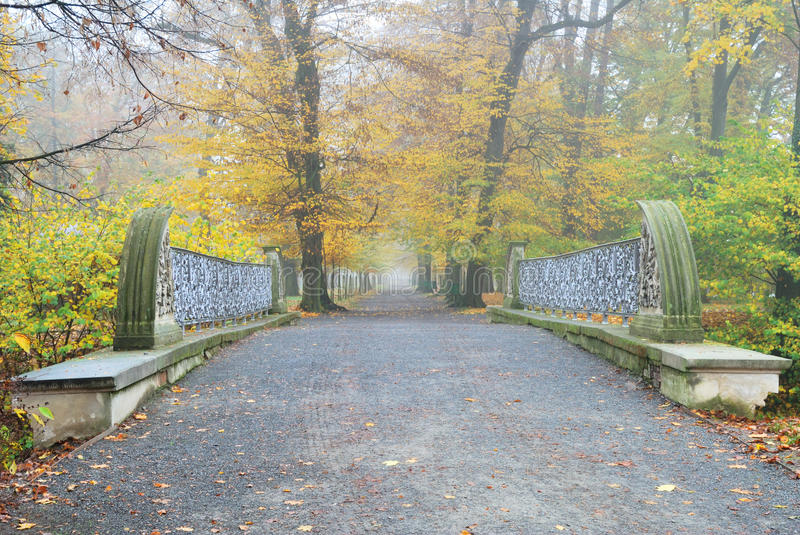 Sentier piéton droit et long de Forest Park avec le pont photo stock