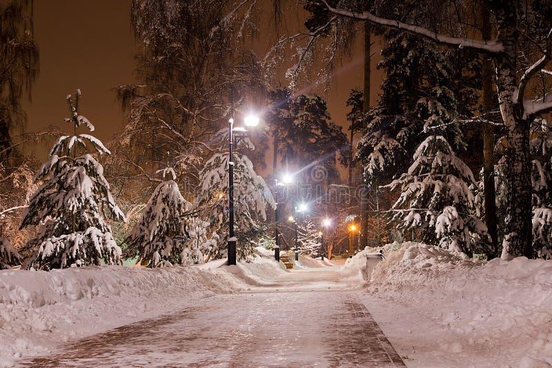Sentier piéton en parc de ville d'hiver le soir photos stock