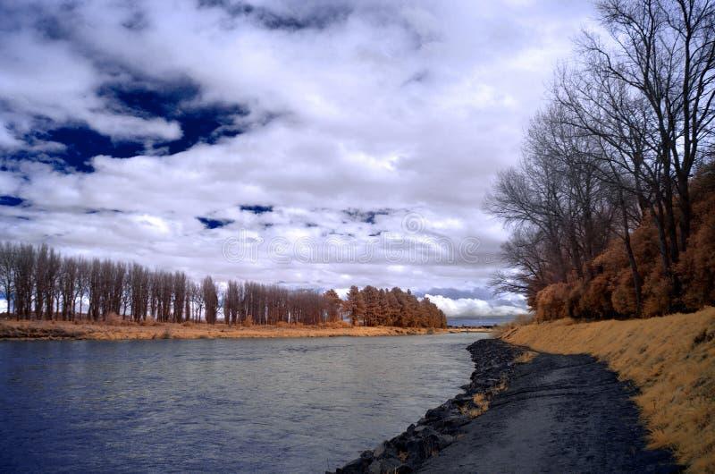 Sentier piéton et arbres le long de la rivière de Manawatu dans le nord de palmerston photographie stock libre de droits