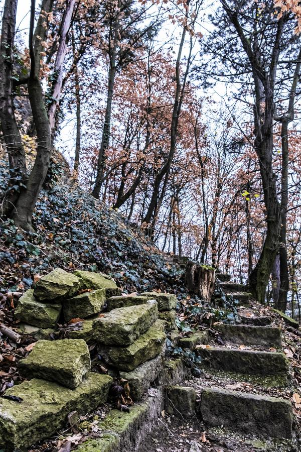 Sentier piéton lapidé cassé dans la forêt d'automne, Nitra images stock