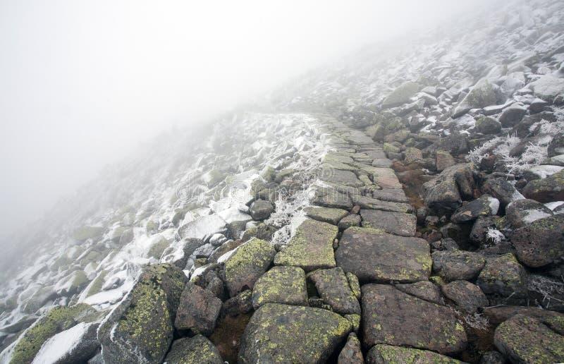 Sentier piéton pierreux dans le paysage d'hiver menant dans le brouillard photographie stock libre de droits