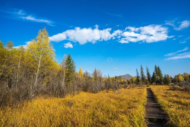 Sentier piéton sur la montagne dans Kanas photos stock