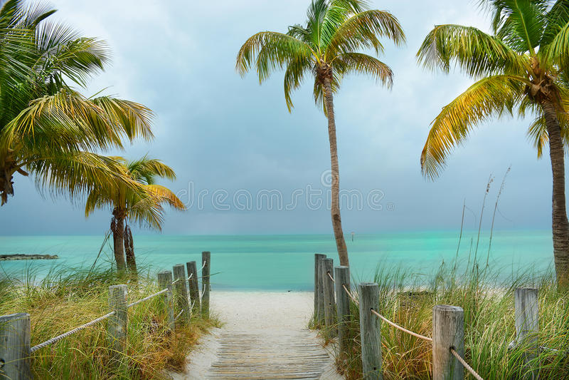 Sentier piéton sur la plage vers le bel océan vert avec des palmiers photographie stock libre de droits