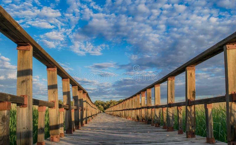 Sentier pi?ton en nature Parc national Tablas De Daimiel Ciudad r?el l'espagne photos stock