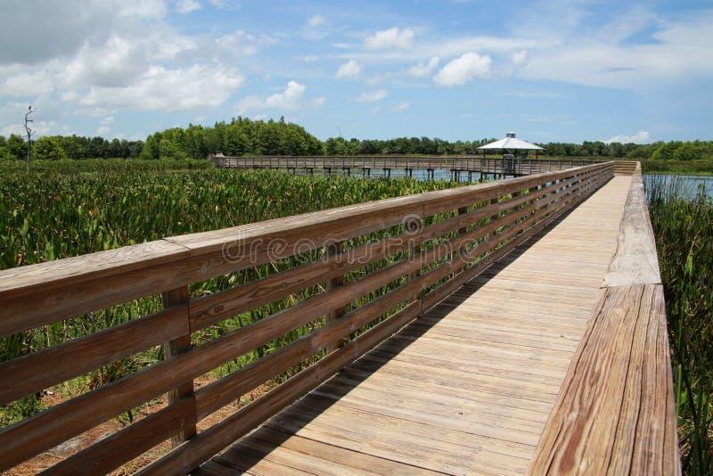 Sentiero costiero Cay Wetlands verde immagini stock