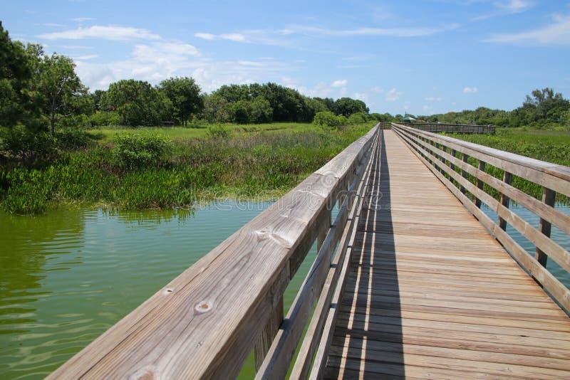 Sentiero costiero Cay Wetlands verde fotografia stock libera da diritti