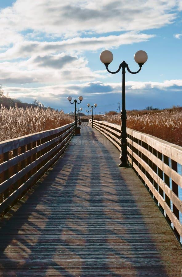 Sentiero costiero di legno attraverso le canne alla luce solare, una passeggiata di legno della plancia con i pali della luce fotografie stock