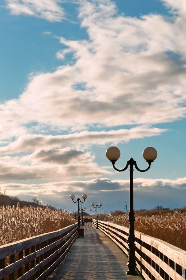Sentiero costiero di legno attraverso le canne alla luce solare, una passeggiata di legno della plancia con i pali della luce fotografia stock libera da diritti