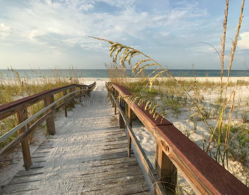 Sentiero costiero di legno nelle dune ad alba fotografie stock libere da diritti