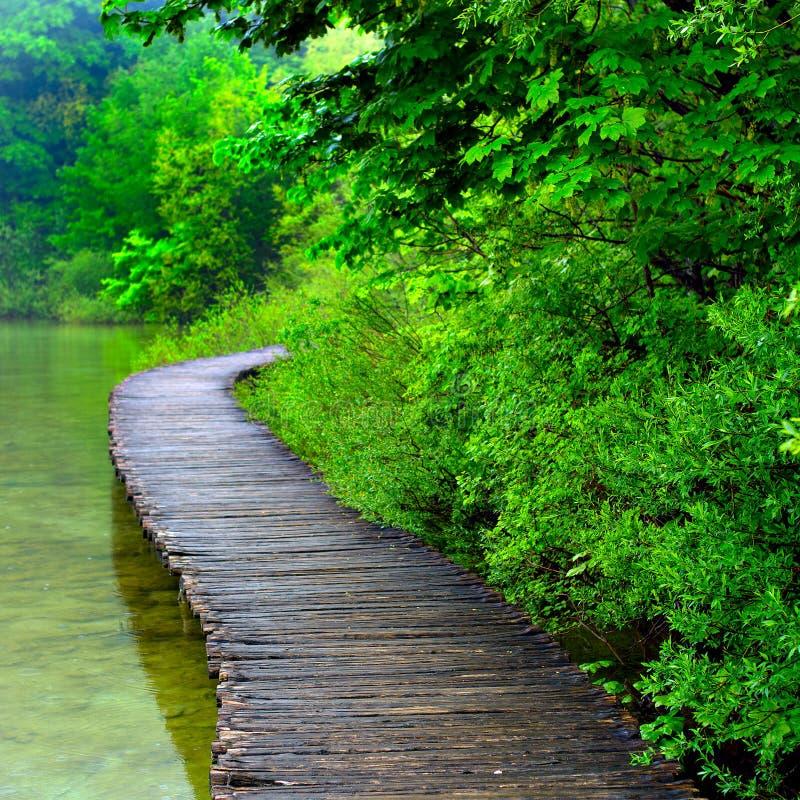 Sentiero costiero nel parco fotografia stock