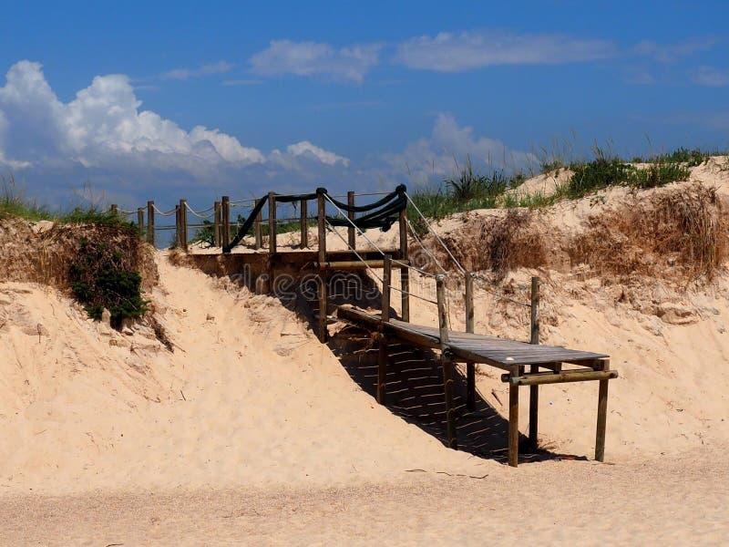 Sentiero costiero su Ilha Da Culatra nella regione di Algarve di Portogallo immagini stock libere da diritti