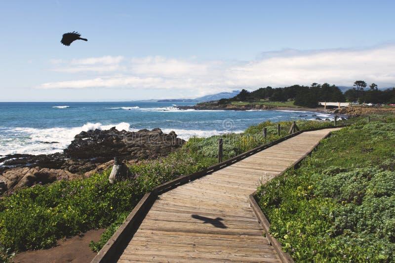 Sentiero costiero sulla spiaggia immagine stock libera da diritti