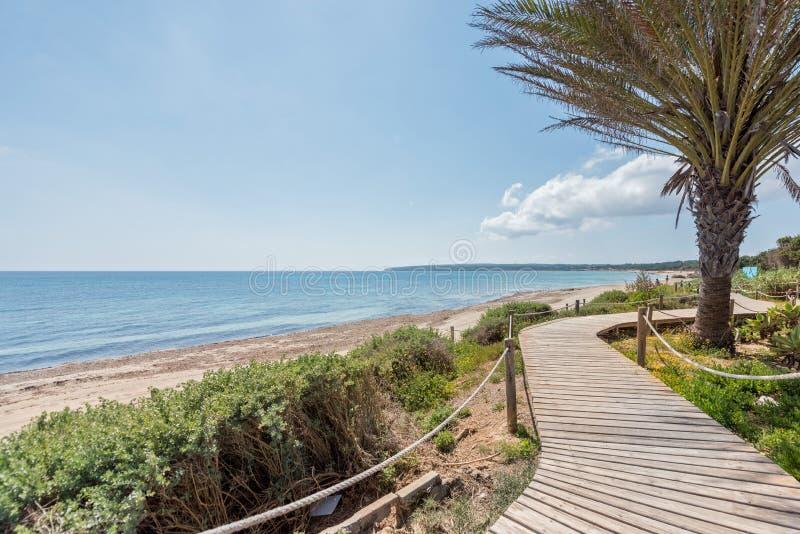 Sentiero costiero sulla spiaggia Formentera di Beso immagini stock