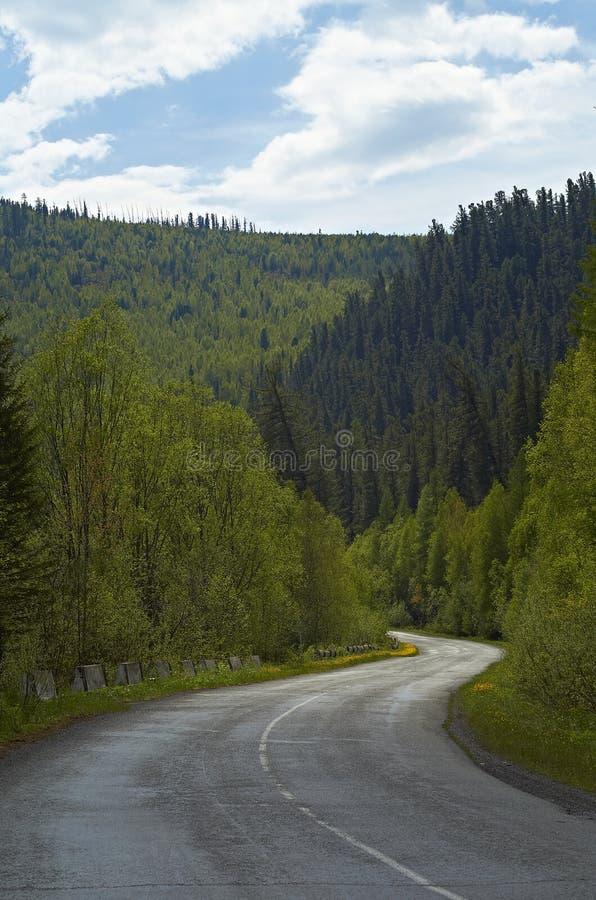 Sentiero forestale al Mak del KOH fotografie stock