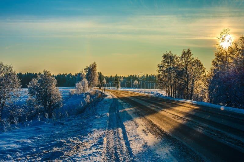 Sentiero forestale russo di inverno in neve fotografia stock