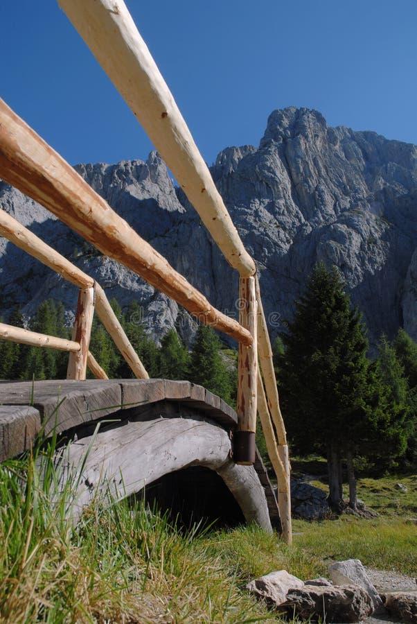 Download Sentiero Per Pedoni Alpino: Ponticello Di Legno Immagine Stock - Immagine di paesaggio, alpi: 3883749