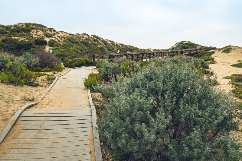 Sentiero per pedoni attraverso le dune di sabbia fra Oso Flaco Lake ed oceano Riserva nazionale delle dune di Guadalupe-Nipomo, C immagine stock libera da diritti