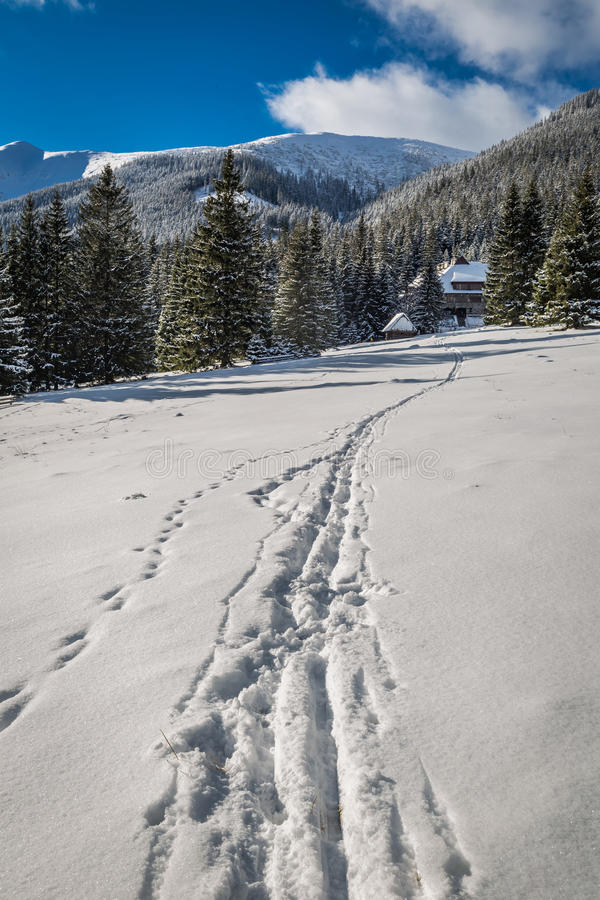 Sentiero per pedoni che conduce al riparo nell'inverno, montagne della montagna di Tatra fotografie stock libere da diritti