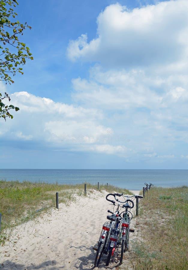 Sentiero per pedoni da tirare, isola di Ruegen, Mar Baltico, Germania immagine stock libera da diritti