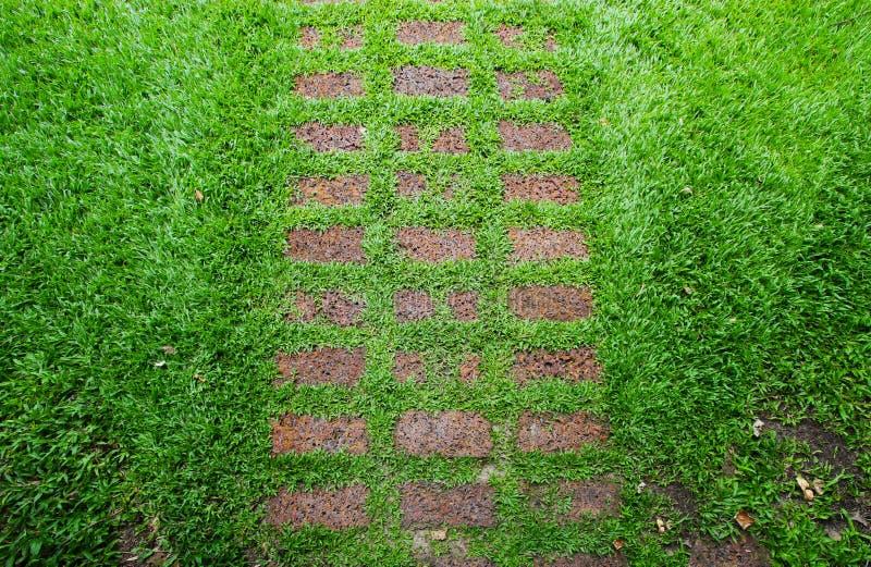 Sentiero Per Pedoni Di Pietra In Prato Inglese Verde