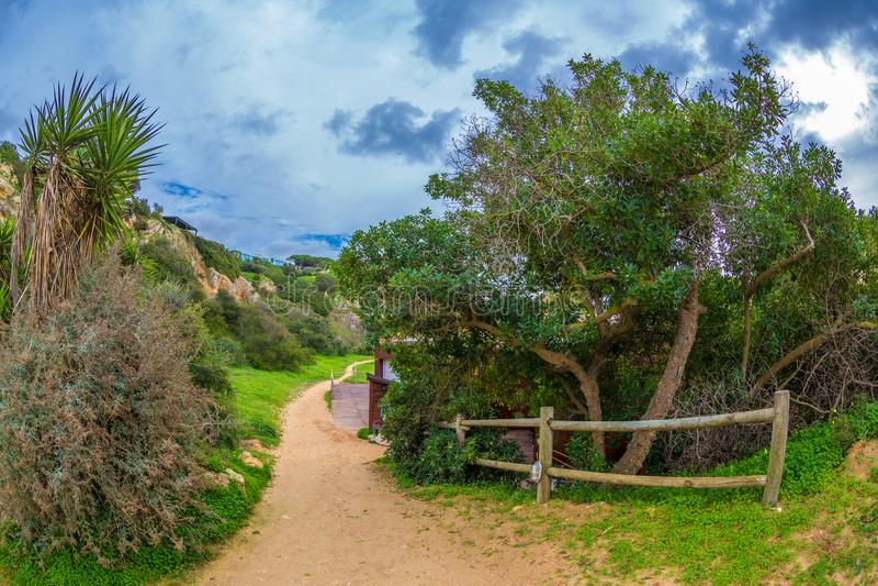 Sentiero per pedoni fra i bei alberi verdi ed erba che conduce alla spiaggia famosa in Alvor, Algarve, Portogallo immagini stock