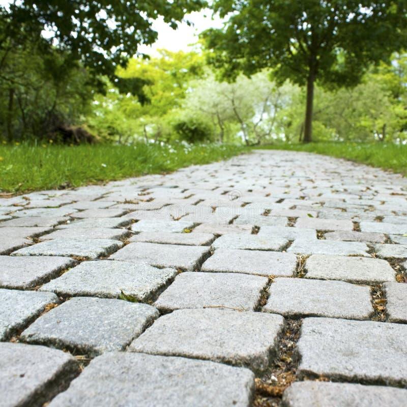 Sentiero per pedoni in giardino, sosta fotografie stock libere da diritti