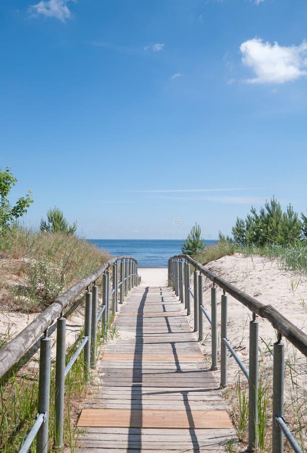 Sentiero per pedoni, isola di Ruegen, Mar Baltico, Germania fotografia stock libera da diritti