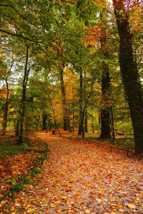 Sentiero per pedoni nel parco in autunno, Zagabria, Croazia, Europa di Maksimir immagine stock