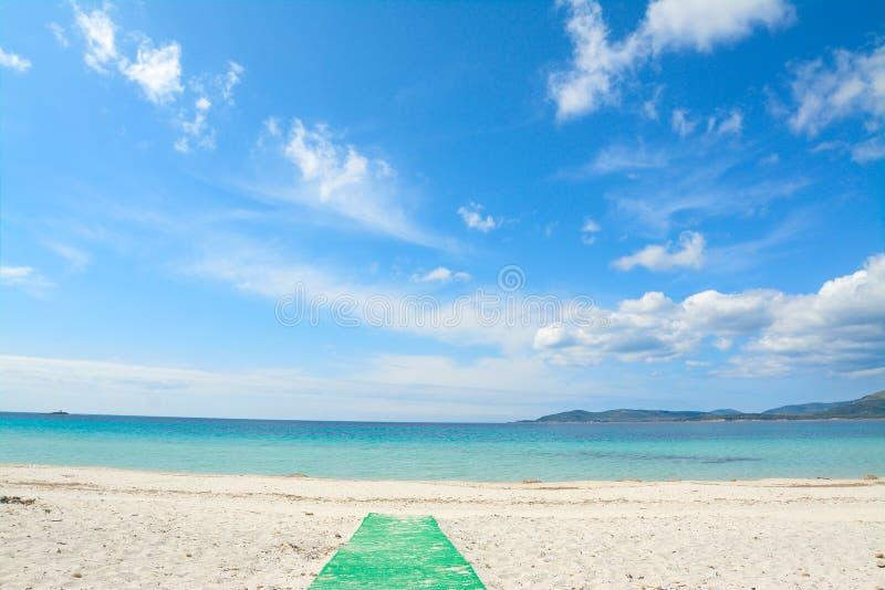 Sentiero per pedoni verde alla spiaggia immagine stock