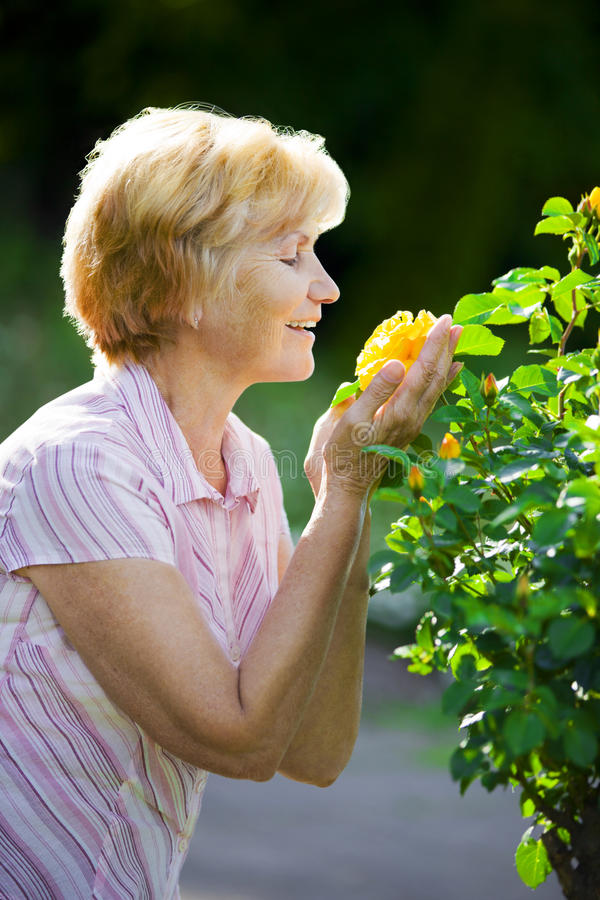 Sentimentality. Mature Old Lady Smelling Yellow Flower royalty free stock photo