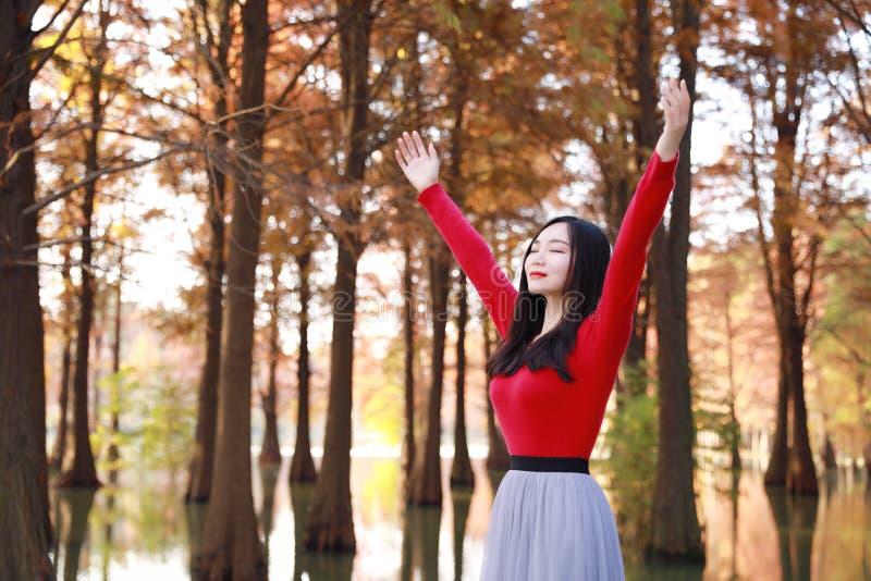 Sentimento feliz da mulher da liberdade livre no ar da natureza do outono fotografia de stock royalty free