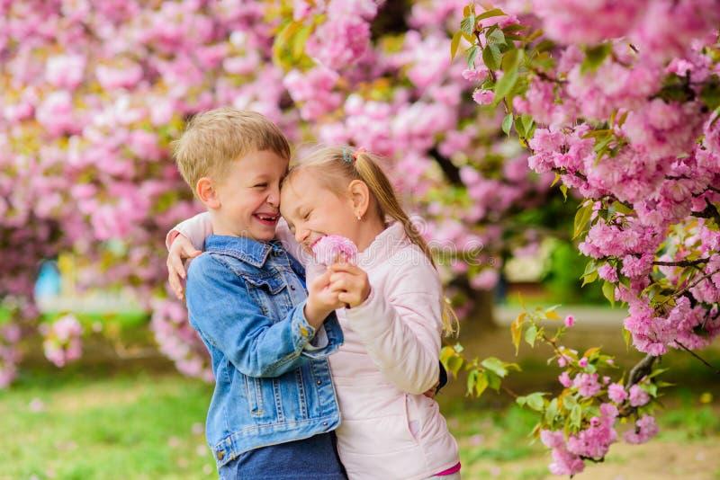 Sentimentos macios do amor A menina aprecia flores da mola Dando todas as flores a ela Surpreendente ela Crianças que apreciam o  fotos de stock royalty free