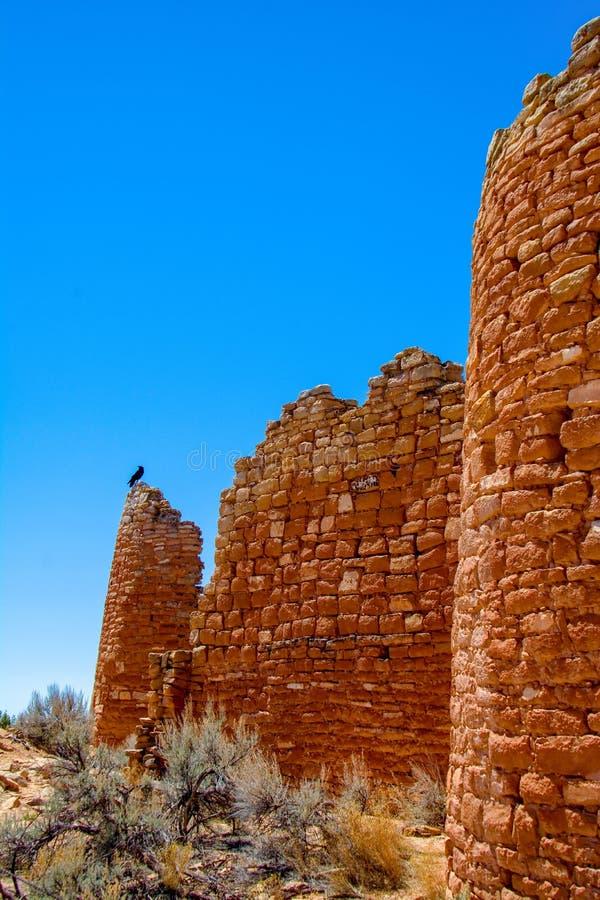 Sentinela em paredes do castelo de Hovenweep imagem de stock