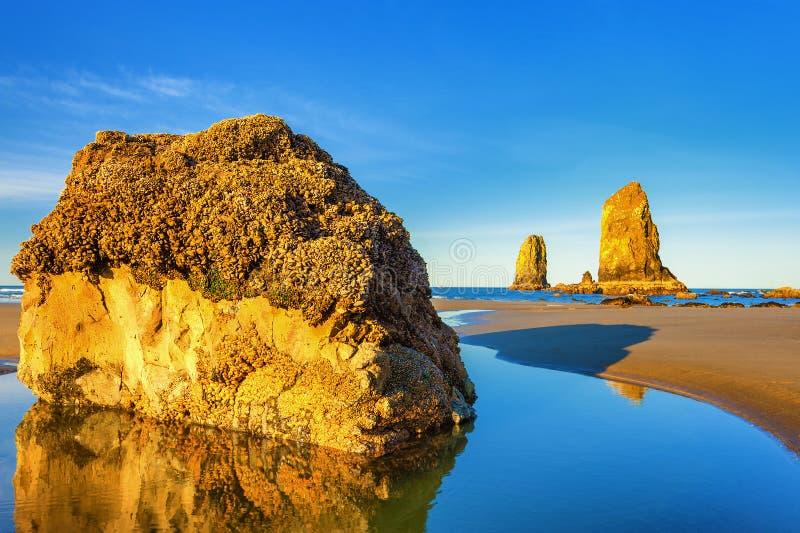 Sentinelle della costa dell'Oregon fotografia stock