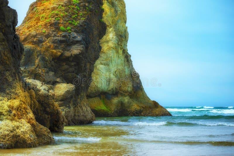 Sentinelle giganti alla spiaggia di arcadia fotografia stock libera da diritti