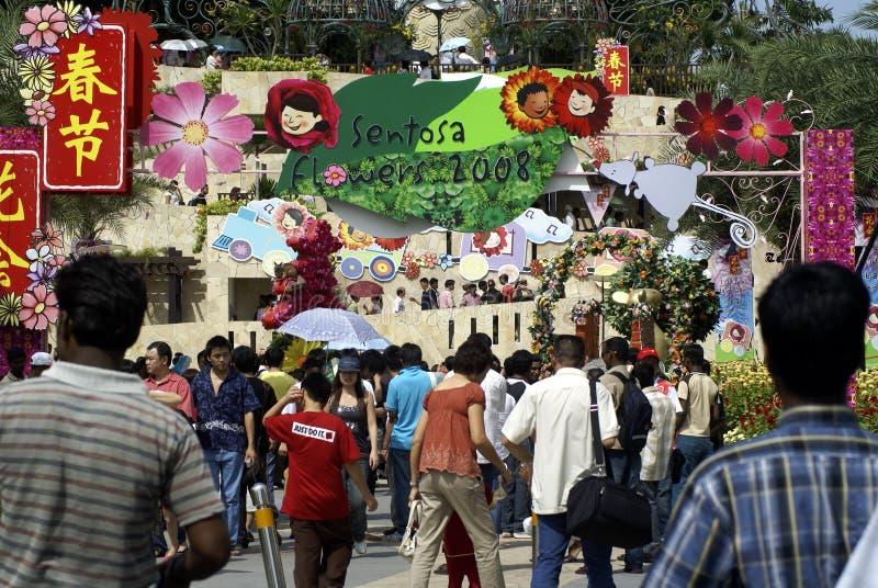 Sentosa fiorisce il festival 2008 fotografia stock