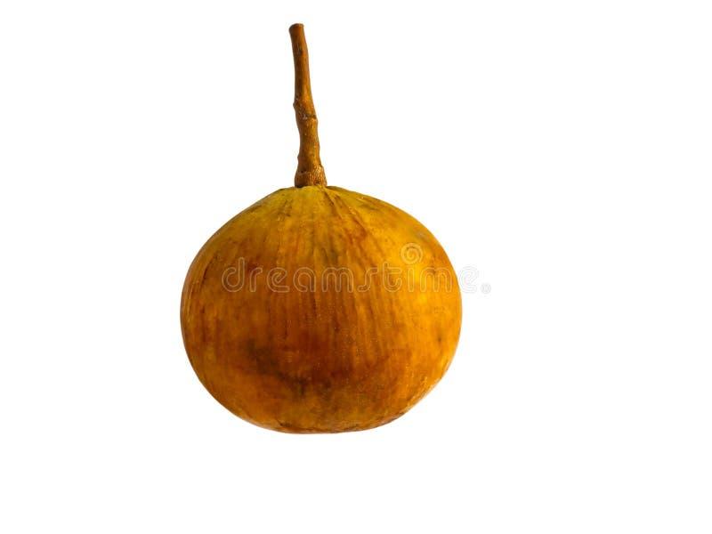 Sentulfruit op witte achtergrond met het knippen van weg wordt geïsoleerd die royalty-vrije stock foto's