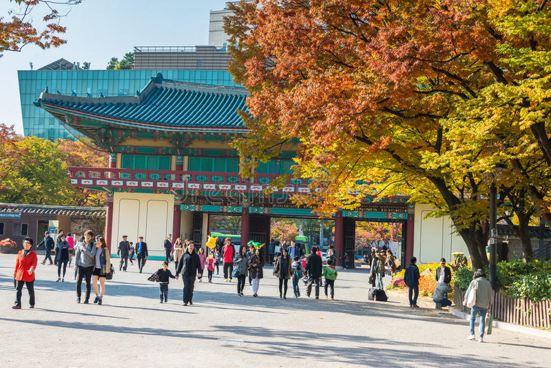 Seorak Sokcho, Sydkorea - Oktober 26, 2013: Turister på royaltyfria bilder