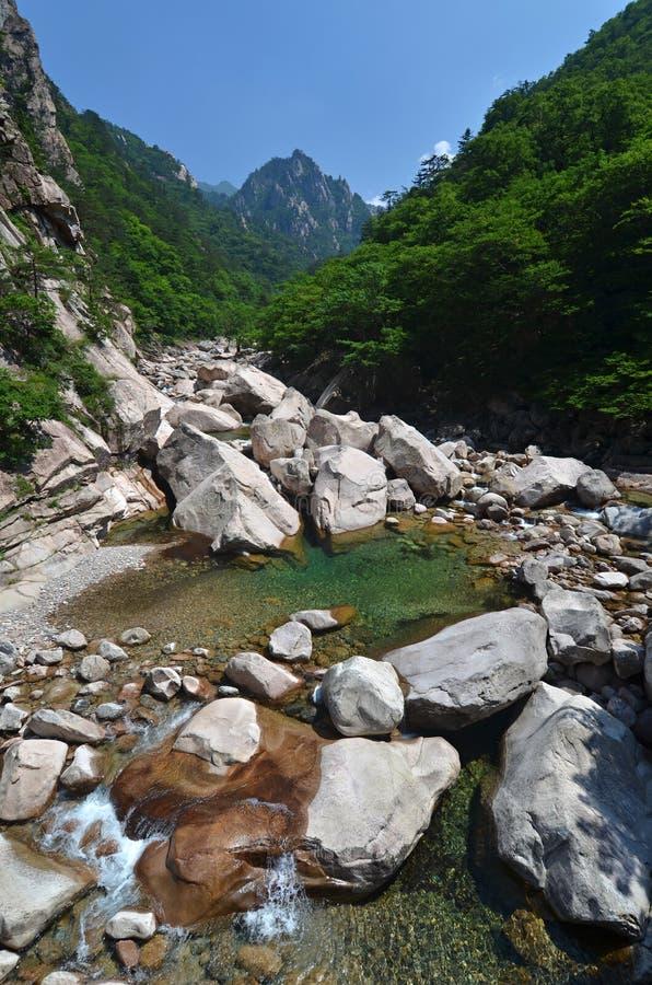 Seoraksan的森林河,韩国 库存照片