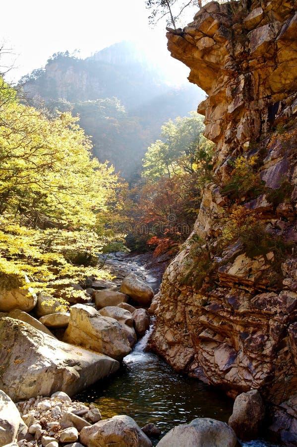Seoraksanberg tijdens het seizoen van de dalingsherfst, Zuid-Korea royalty-vrije stock foto's