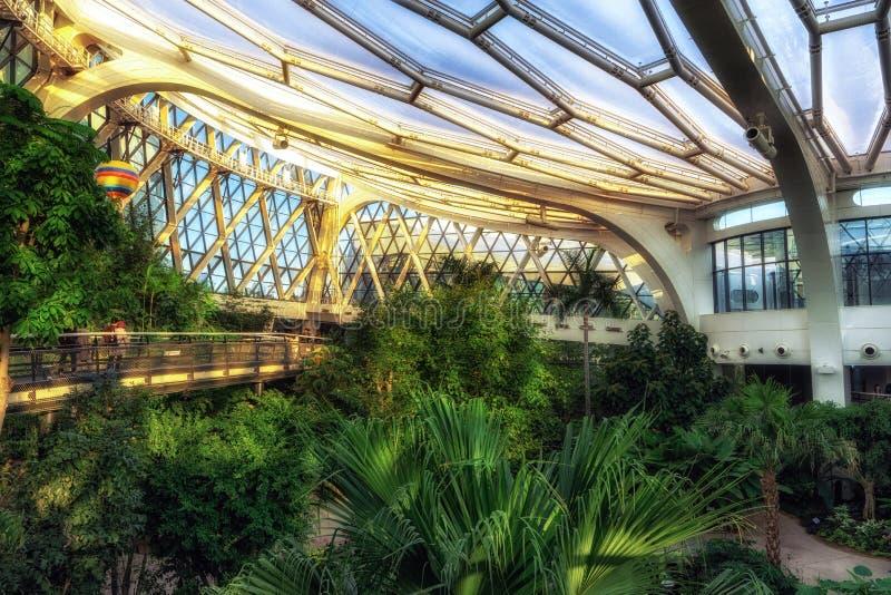 Seoul botanic park tropical stock image