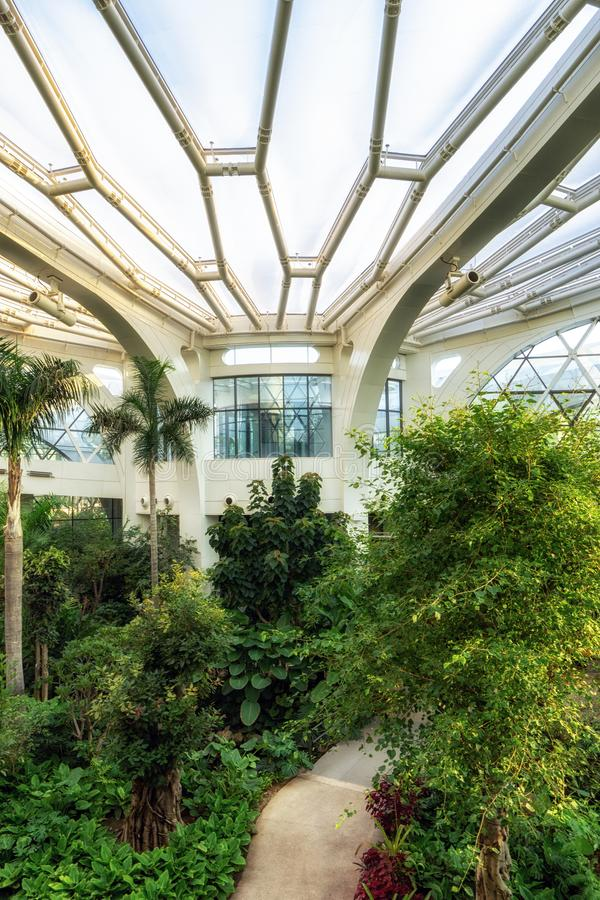 Seoul botanic park tropical stock images