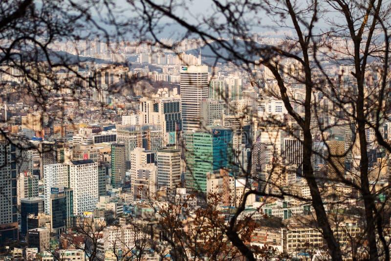 SEOUL, COREA DEL SUD - 22 GENNAIO 2018: Colpo aereo dell'orizzonte di Seoul incorniciato con i brunch dal parco di Namsan al tram fotografie stock libere da diritti