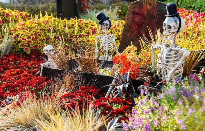 SEOUL, COREA DEL SUD - 25 OTTOBRE: Decorazioni del partito di Halloween fotografia stock