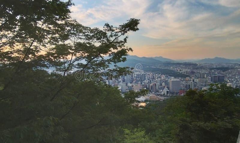 Seoul panorama från det Namsan tornet royaltyfria bilder