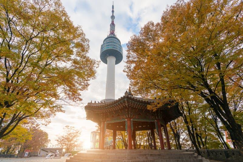Seoul torn med gula och röda höstlönnlöv på Namsan mo royaltyfria foton