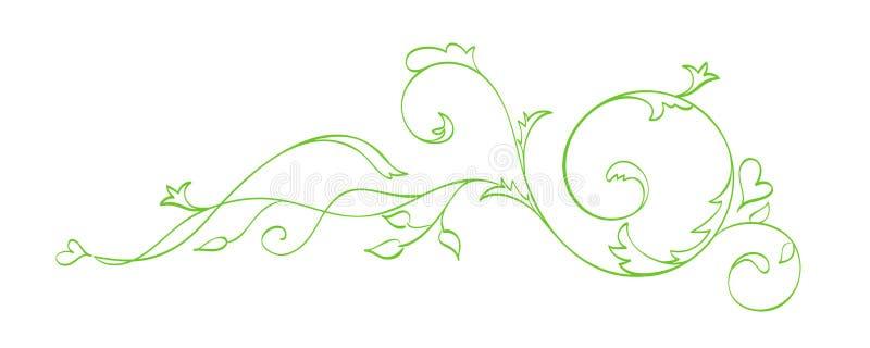 Separador caligráfico tirado do vetor mão verde A mola floresce o elemento do projeto Decoração clara floral do estilo para cumpr ilustração royalty free
