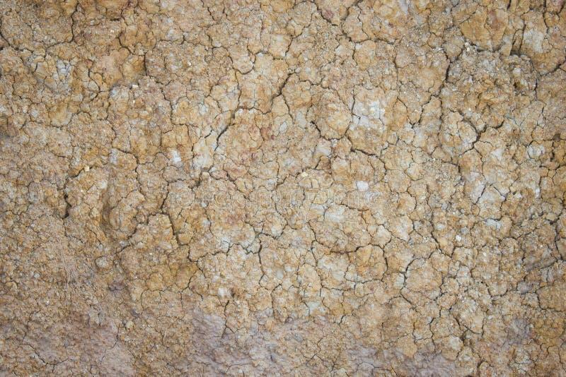 Separat jord eller förtorkad jord eller sprucken jordning eller torkad jordning arkivfoto