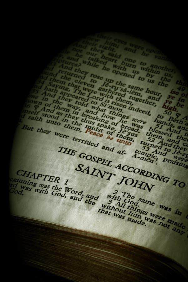 Sepia de John da série da Bíblia fotos de stock royalty free