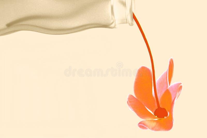 Sepia joy stock photo